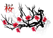 SAKURA branch and calligraphy Stock Photo