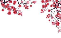 Sakura Branch04 Stock Afbeeldingen