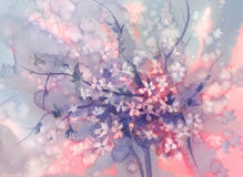 Sakura branches in bloom watercolor background stock illustration
