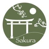 Sakura branches and torii, ritual gates. Japan vector illustration