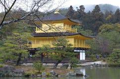 Sakura.Buddhist temple. Buddhist gold  temple. Sakura. Japan Royalty Free Stock Photography