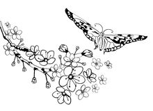Sakura and butterfly. Branch of sakura with flowers and butterfly.Cherry Blossom. Hand drawning vector illustration Royalty Free Stock Photo