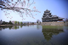 Sakura and The Castle, Matsumoto, Japan Royalty Free Stock Images