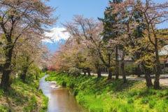 Oshino village with Fujisan and sakrura. Sakura or cherry blossom along the canal at Oshino Hakkai village with mountain Fuji or Fujisan view in spring royalty free stock images