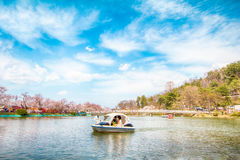 Sakura,Cherry blossom festival . Stock Photos