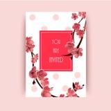 Sakura, Cherry Blossoming Tree Vector Background-Illustratie Stock Foto