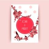 Sakura, Cherry Blossoming Tree Vector Background-Illustratie Stock Afbeeldingen