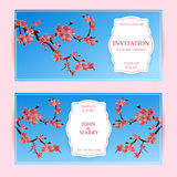 Sakura, Cherry Blossoming Tree Vector Card Illustration. Set of Beautiful Floral Banners, Greeting cards, Wedding Invitations, Bac. Kdrops, Backgrounds, Vouchers Stock Photo