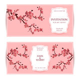 Sakura, Cherry Blossoming Tree Vector Card Illustration. Set of Beautiful Floral Banners, Greeting cards, Wedding Invitations, Bac. Kdrops, Backgrounds, Vouchers Royalty Free Stock Photos