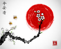 Sakura cherry branch in white blossom, two bees and red sun on white background. Traditional oriental ink painting sumi Royalty Free Stock Photos