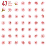 Sakura cherry icon set of 47 flower. EPS 10. Sakura cherry icon set of 47 flower. Cherry Blossoms design parts material. EPS 10 vector file included royalty free illustration