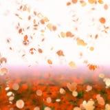 Sakura cherry kwiat Obrazy Stock