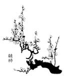 Sakura chinese painting Stock Photo