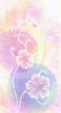 Sakura cor-de-rosa Foto de Stock Royalty Free