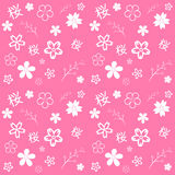 Sakura. Stock Image