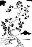 sakura czereśniowy japoński drzewo royalty ilustracja