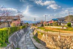 Sakura, Czereśniowy okwitnięcie w wiośnie wioska morela Obraz Royalty Free