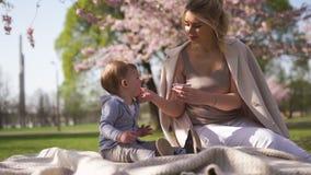 Sakura czere?niowy okwitni?cie - m?ody mamy matki obsiadanie z jej ch?opiec dziecka synem w parku w Ryskim, Latvia Europa zbiory wideo