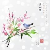Sakura dans la branche de fleur et en bambou et le petit oiseau Photo stock