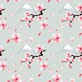 Sakura de florescência no fundo azul, teste padrão sem emenda imagens de stock royalty free