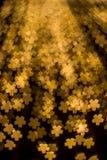 Sakura deu forma ao bokeh de decorar luzes durante o Natal e o festival do ano novo Fotos de Stock Royalty Free