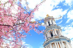 Sakura die in Kiev Pechersk Lavra bloeien Stock Afbeelding
