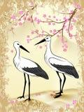 Sakura e cicogna fotografie stock