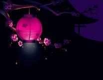 Sakura e lanterna di carta Fotografie Stock