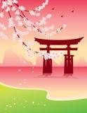 Sakura e tori Fotografia Stock Libera da Diritti