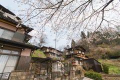 Sakura en el CIT fotos de archivo
