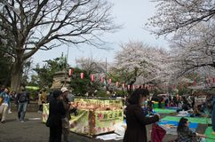 Sakura en el parque de Ueno fotografía de archivo