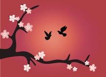 Sakura En filial av körsbärsröda blomningar med fåglar på solnedgången stock illustrationer