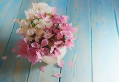 Sakura en florero Imágenes de archivo libres de regalías