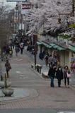 Sakura en Nara fotografía de archivo