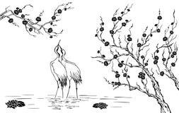 Sakura en reigers Royalty-vrije Illustratie