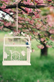 Sakura et la cage avec un oiseau Photos libres de droits