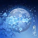 Sakura et lune Photographie stock libre de droits