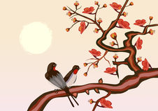 sakura .Evening in the garden blooming cherry and birds stock illustration