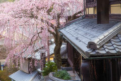 Sakura at famous street, Sannen-Zaka, in Kyoto Royalty Free Stock Image