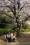 Sakura Festival in Tokyo Japan Stock Images