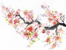 Sakura filial med den blommande japanska körsbäret vattenfärgillustra Arkivbilder