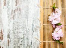 Sakura filial på en matt bambu Arkivfoto