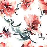 Sakura Flower Fotografia Stock Libera da Diritti
