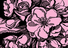 Sakura flower pink leaves twigs graphics. Decor Stock Photo