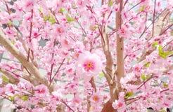 Sakura Flowers artificial para el estilo japonés de adornamiento Fotografía de archivo libre de regalías