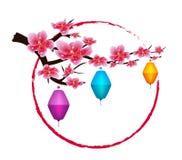 Sakura flowers background. Cherry blossom lantern isolated white background. Chinese new year Royalty Free Stock Photo