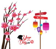 Sakura flowers background. Cherry blossom and lantern isolated white background. Chinese new year 2018 hieroglyph: Dog Royalty Free Stock Photography