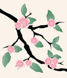 Sakura flowers banners Royalty Free Stock Images