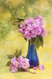 Sakura flowers in a blue vase. Royalty Free Stock Photography