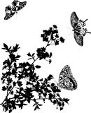 Sakura flowers and butterflies silhouettes Stock Photography